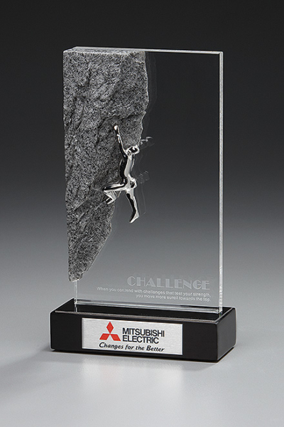 Challenge Award