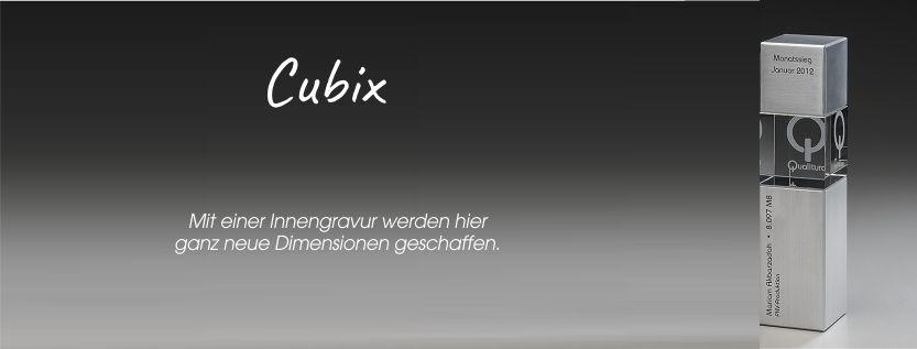 Artic Cubix